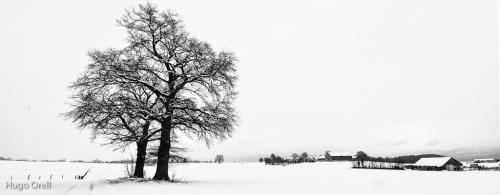 paisaje-1452